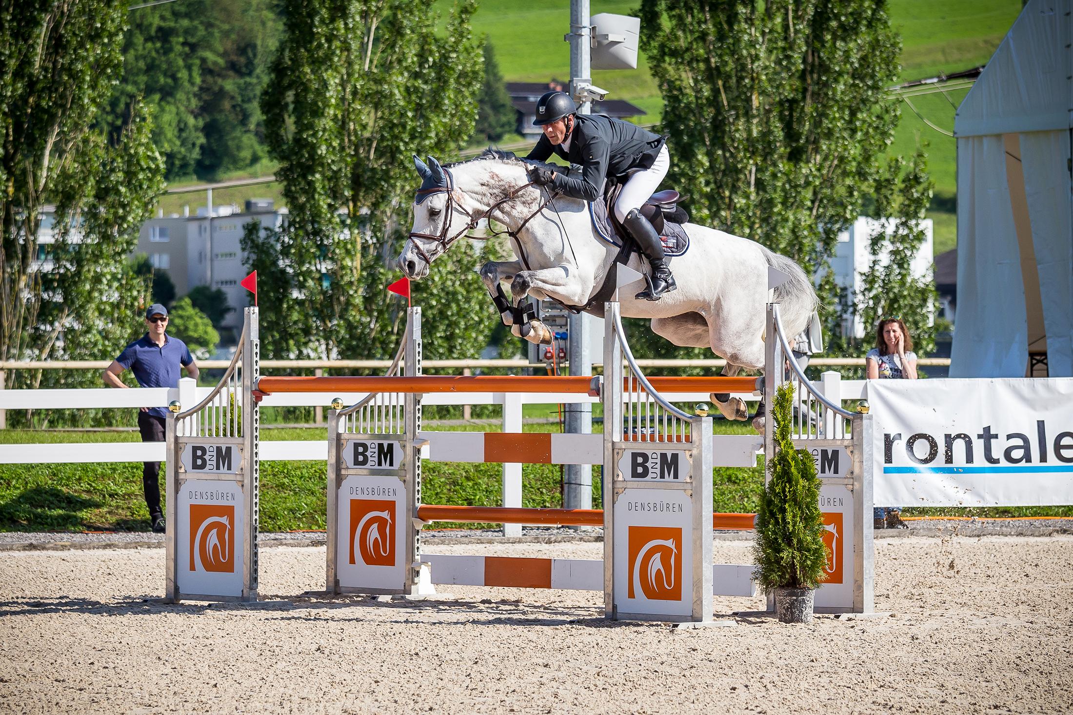 sprung-concours-bundm-horse-management-estermann